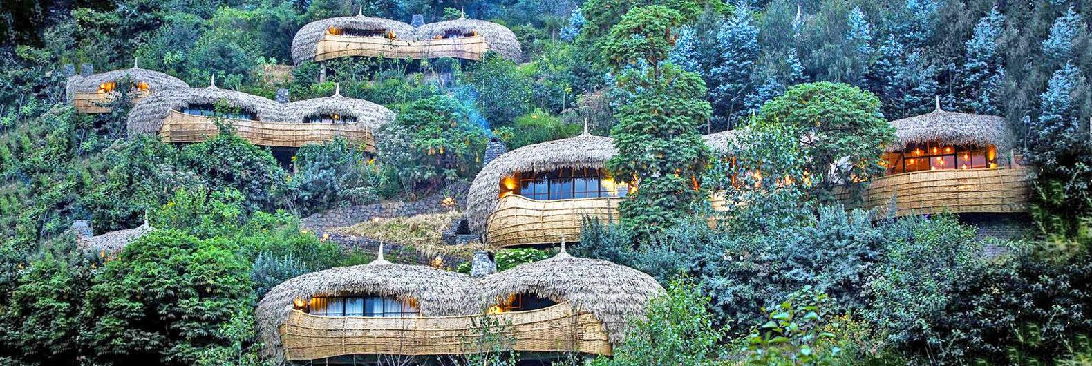 Gorilla Rwanda Safaris