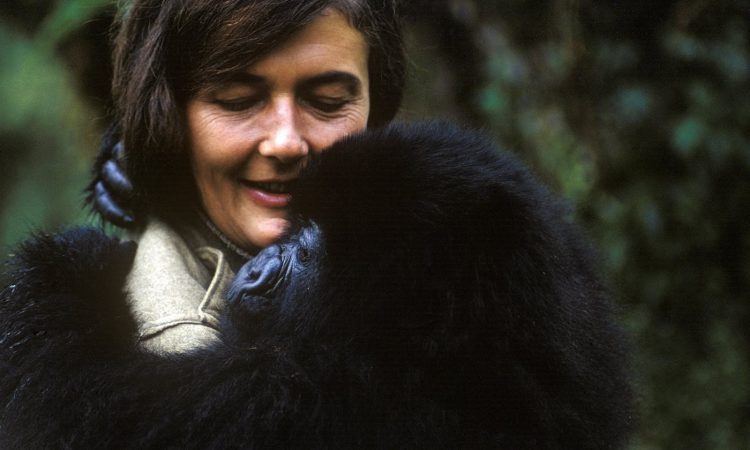Diane Fossey Grave Hike Uganda